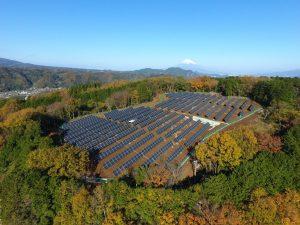 3 mô hình điện mặt trời phổ biến hiện nay