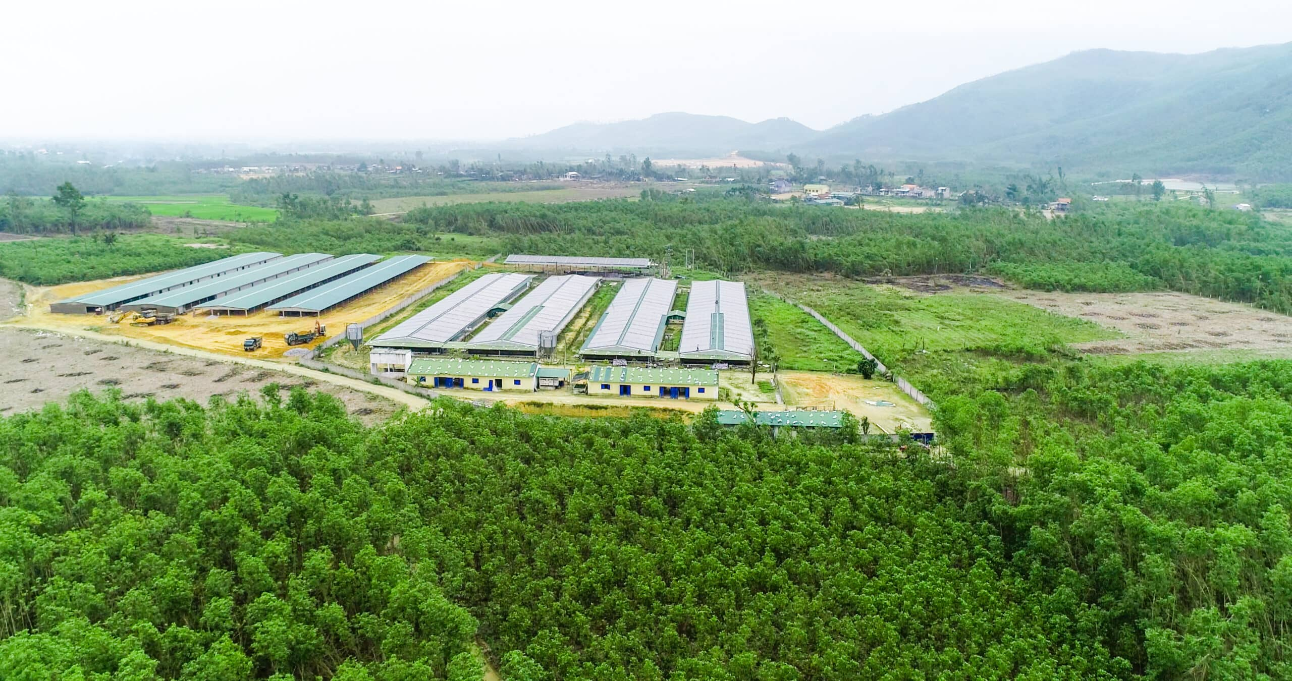 công ty điện mặt trời